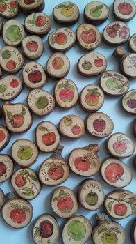 りんごの木マグネット.jpg