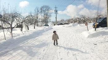 長野1月.jpg